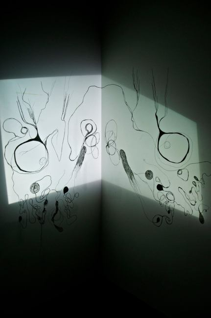 Projection, transparency frequency drawing, stop-motion animation, wall drawing installation work.2014.